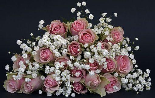 Aga Kwiaty